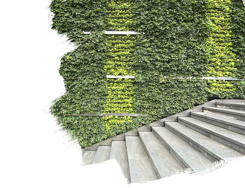 JLL Global Sustainability Report 209